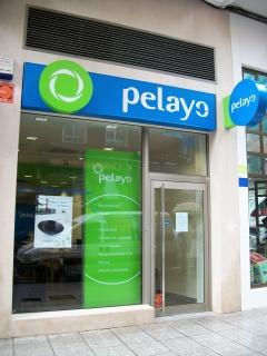 Mutua de seguros pelayo cristina solares dom nguez for Oficinas pelayo